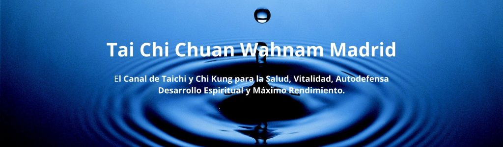 Tai Chi Chuan Wahnam Madrid (5)